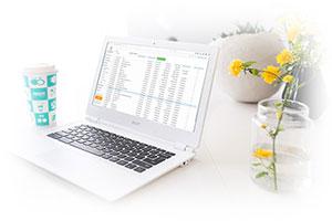 facturi online